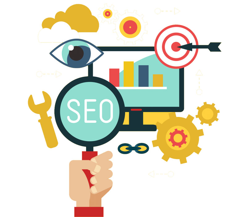 search engine optimization d800